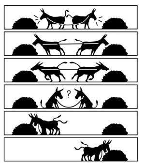 donkey-cooperation.jpg