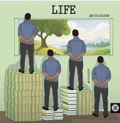 vida.jpg