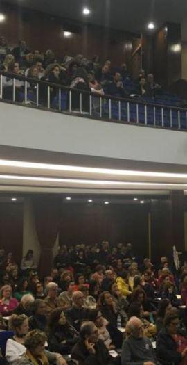 plenario-fenprof.JPG